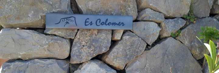 Room Es Colomer, detail